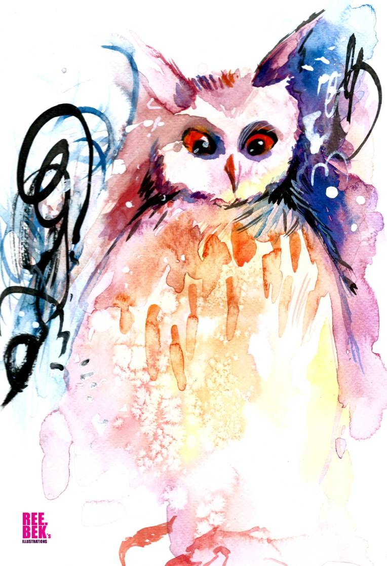 salt-owl-watercolour