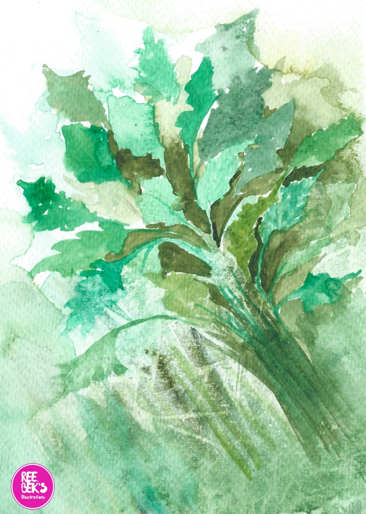 watercolour-parlsy-herb