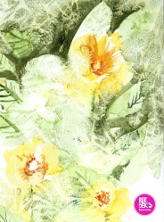 watercolour-practice-Drawing-10