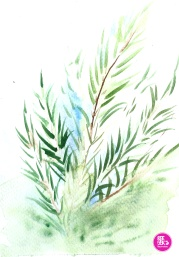 watercolour-practice-Drawing-11