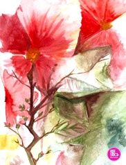 watercolour-practice-Drawing-2