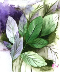 watercolour-practice-Drawing-5