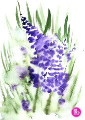 watercolour-practice-Drawing-7