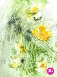 watercolour-practice-Drawing-8