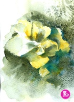 watercolour-practice-Drawing-9