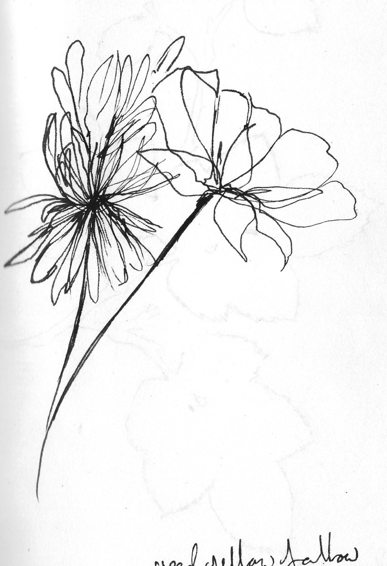 Drawing flowers 5